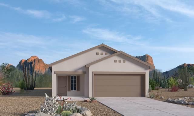 4831 King's Peak Road NE, Rio Rancho, NM 87144 (MLS #983312) :: The Bigelow Team / Red Fox Realty