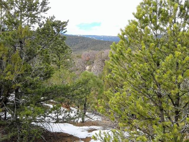 Genie Court, Sandia Park, NM 87047 (MLS #983366) :: The Bigelow Team / Red Fox Realty