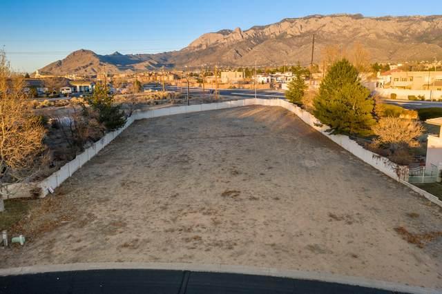 10140 Masters Drive NE, Albuquerque, NM 87111 (MLS #983428) :: The Buchman Group