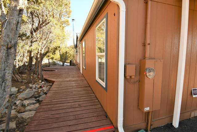 86 Canyon Road, Sandia Park, NM 87047 (MLS #983467) :: Campbell & Campbell Real Estate Services