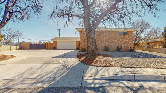 3512 Amherst Place NE, Albuquerque, NM 87107 (MLS #983507) :: Keller Williams Realty