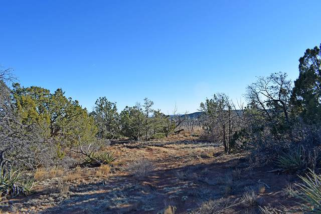 Lot 25 Roadrunner Court #1, Tajique, NM 87016 (MLS #983544) :: The Buchman Group