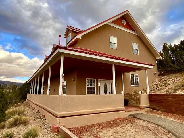 40 Camino De La Buena Vista Road, Placitas, NM 87043 (MLS #983555) :: The Buchman Group