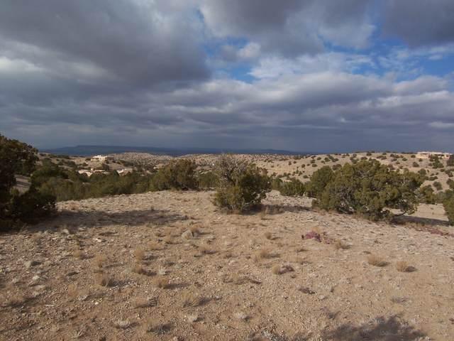 2 Tres Vidas Ridge, Placitas, NM 87043 (MLS #983602) :: Keller Williams Realty