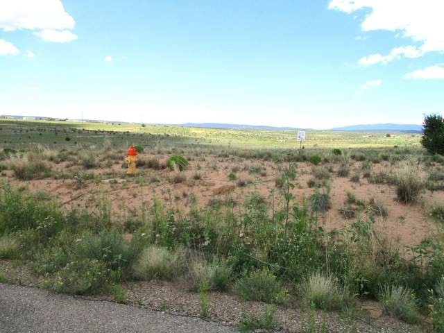 3 Express Drive, Edgewood, NM 87015 (MLS #983632) :: Campbell & Campbell Real Estate Services
