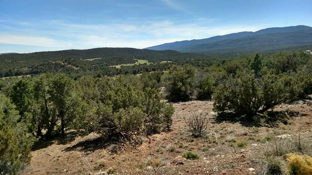 10 Zia Court, Sandia Park, NM 87047 (MLS #983696) :: The Bigelow Team / Red Fox Realty