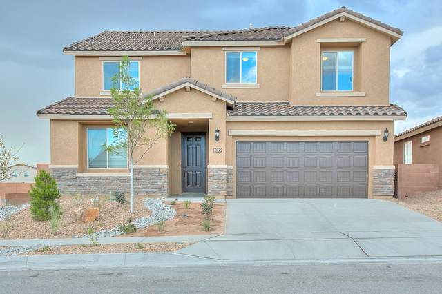 11448 Rock Squirrel Avenue SE, Albuquerque, NM 87123 (MLS #983707) :: Campbell & Campbell Real Estate Services