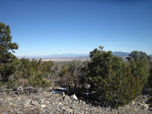 0 Skyline Road, Sandia Park, NM 87047 (MLS #983727) :: The Buchman Group