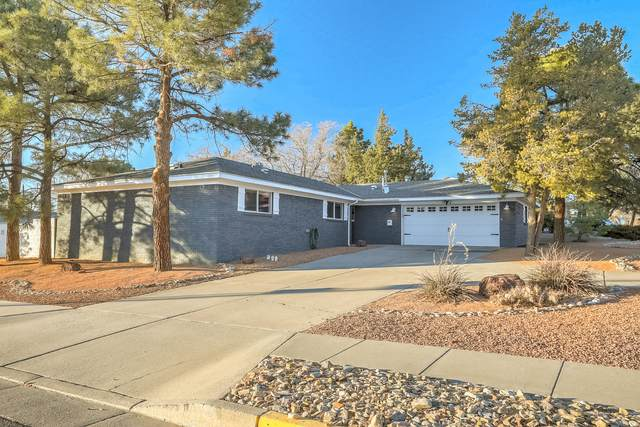 3801 Inca Street NE, Albuquerque, NM 87111 (MLS #983794) :: Campbell & Campbell Real Estate Services