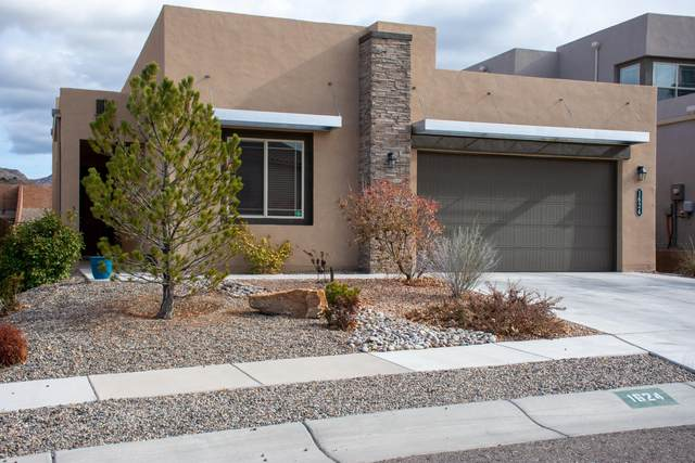 1624 Challedon Drive SE, Albuquerque, NM 87123 (MLS #983840) :: Campbell & Campbell Real Estate Services