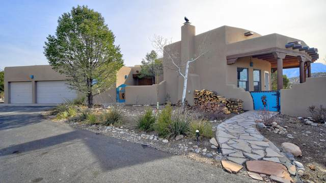 207 Camino De Las Huertas, Placitas, NM 87043 (MLS #983844) :: Keller Williams Realty