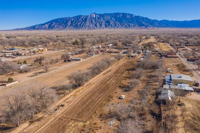 5801 Corrales Road, Corrales, NM 87048 (MLS #983900) :: The Buchman Group