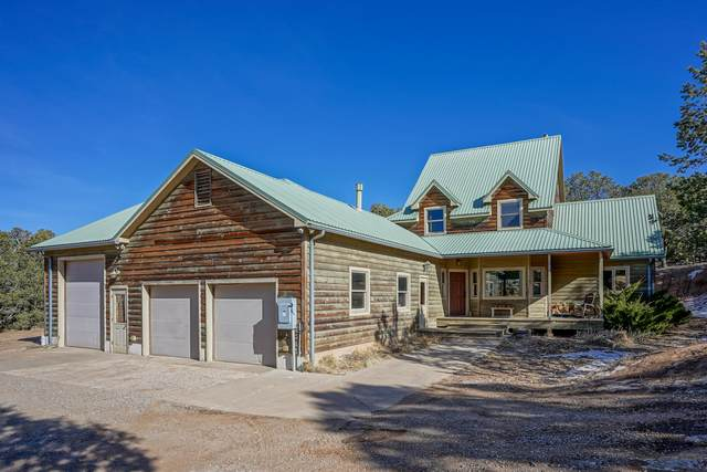 4 Moonlight Drive, Cedar Crest, NM 87008 (MLS #983916) :: Campbell & Campbell Real Estate Services