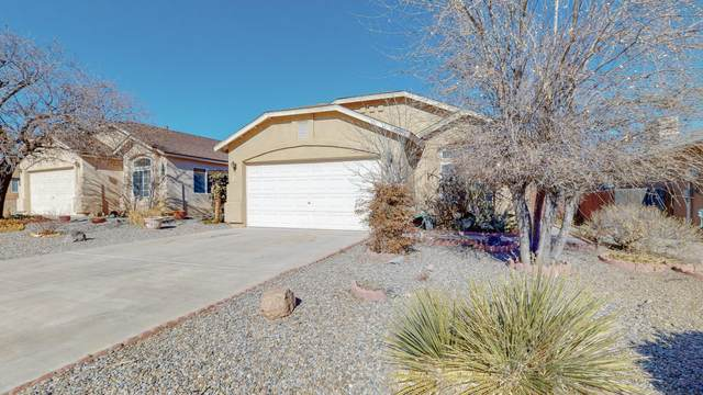 6951 Skylar Drive NE, Rio Rancho, NM 87144 (MLS #983965) :: Campbell & Campbell Real Estate Services