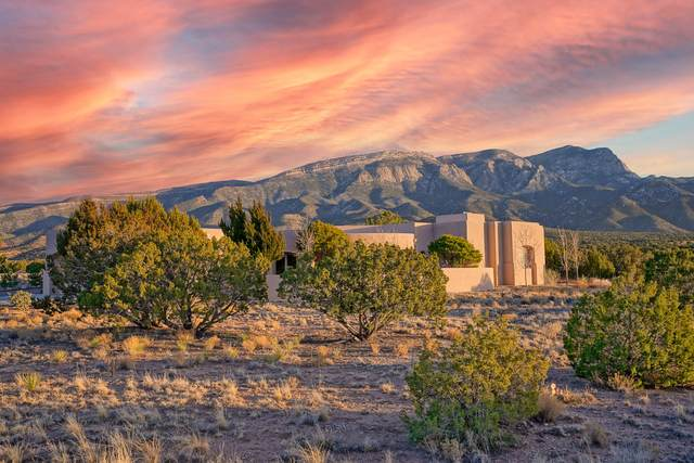10 Morning Star Court, Placitas, NM 87043 (MLS #983977) :: Keller Williams Realty