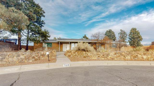 7919 Academy Trail NE, Albuquerque, NM 87109 (MLS #984113) :: Keller Williams Realty