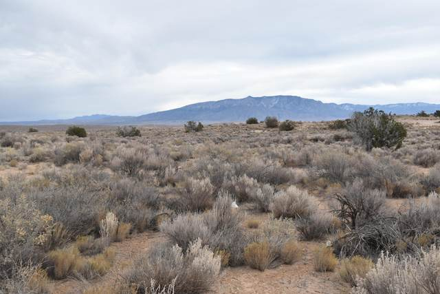 1ST STREET NW, Rio Rancho, NM 87144 (MLS #984124) :: The Buchman Group