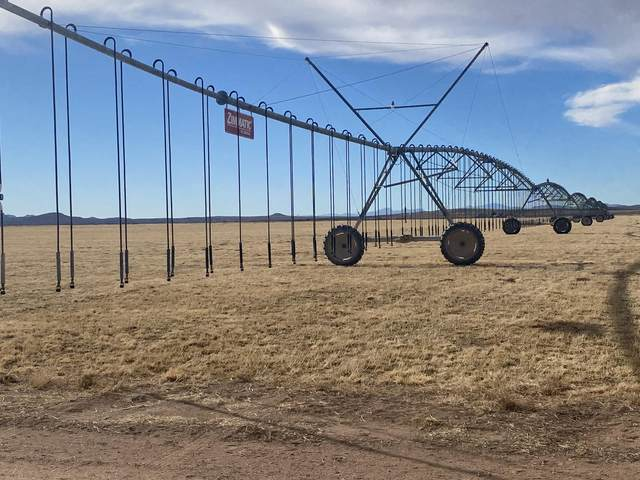 198 Ramos Farms Road - Ak Farms, Lordsburg, NM 88045 (MLS #984145) :: Keller Williams Realty