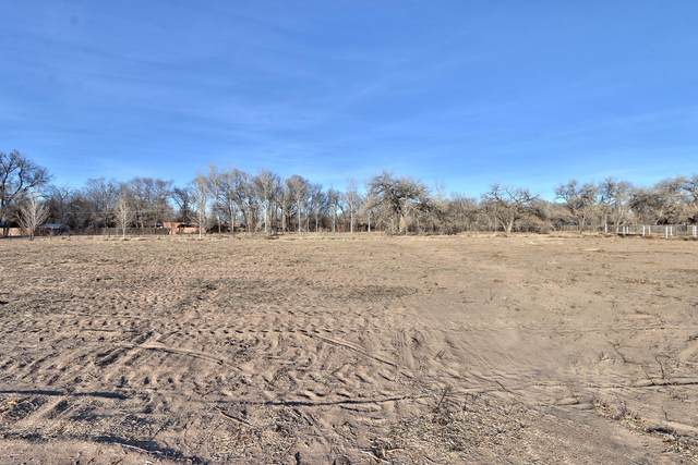 30 W West Meadowlark Lane, Corrales, NM 87048 (MLS #984150) :: The Buchman Group