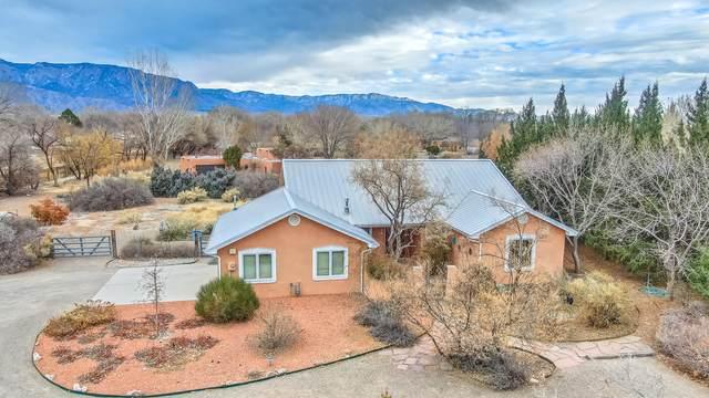 336 Alamos Road, Corrales, NM 87048 (MLS #984184) :: HergGroup Albuquerque