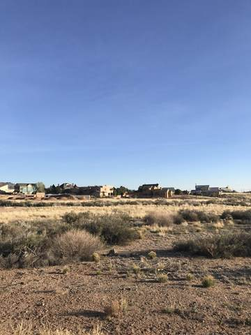 Palomas Road NE, Albuquerque, NM 87122 (MLS #984250) :: The Buchman Group
