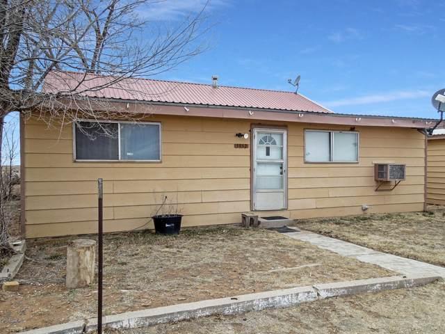 5952 State Hwy 206, Dora, NM 88115 (MLS #984271) :: The Buchman Group