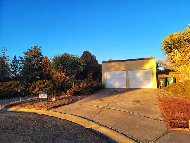 80 Sienna Court NE, Rio Rancho, NM 87124 (MLS #984277) :: Campbell & Campbell Real Estate Services