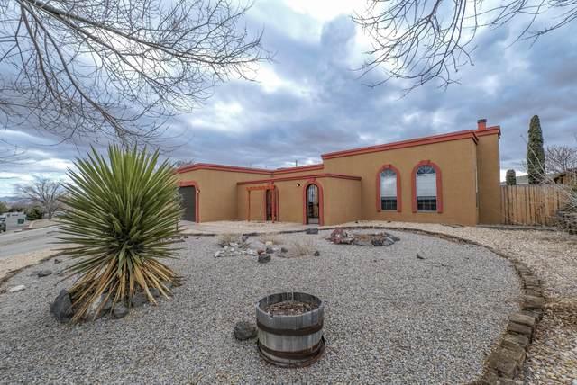 551 Silver Saddle Road SE, Rio Rancho, NM 87124 (MLS #984368) :: Keller Williams Realty