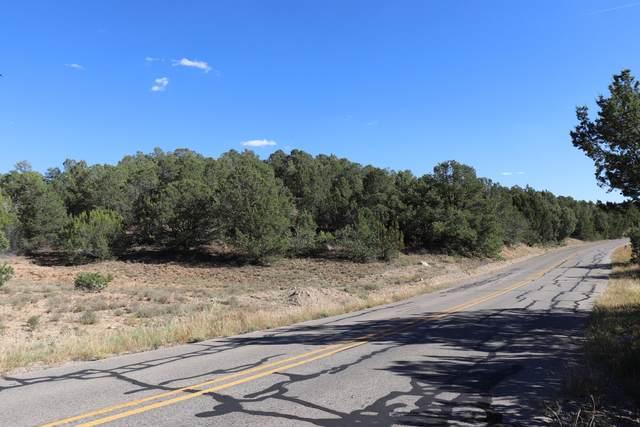 25 Five Hills Drive, Tijeras, NM 87059 (MLS #984401) :: The Buchman Group