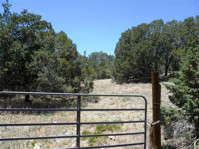 501 Barton Road, Edgewood, NM 87015 (MLS #984408) :: Keller Williams Realty
