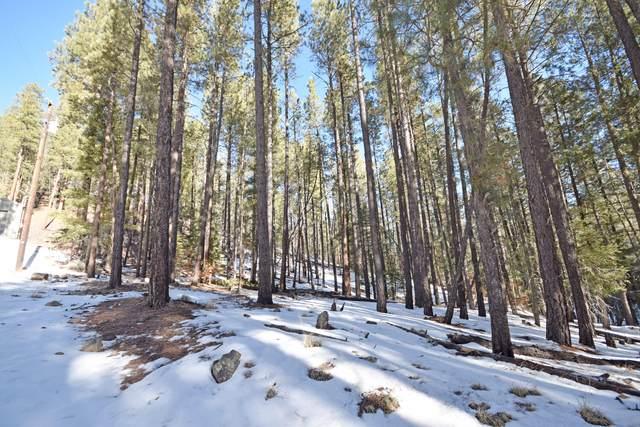 0 Beryl @ Onyx Road, Jemez Springs, NM 87025 (MLS #984423) :: The Buchman Group