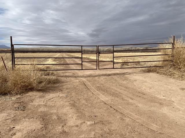 Jamarillo Loop, Bosque, NM 87006 (MLS #984435) :: Keller Williams Realty