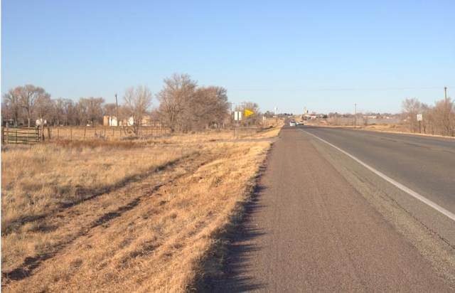Nm-41, Moriarty, NM 87035 (MLS #984451) :: Keller Williams Realty