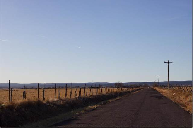 45 A Mcnabb Road, Moriarty, NM 87035 (MLS #984453) :: The Buchman Group