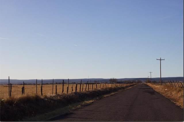 45 A Mcnabb Road, Moriarty, NM 87035 (MLS #984453) :: Keller Williams Realty