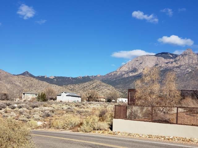 11105 Modesto Avenue NE, Albuquerque, NM 87122 (MLS #984516) :: The Buchman Group