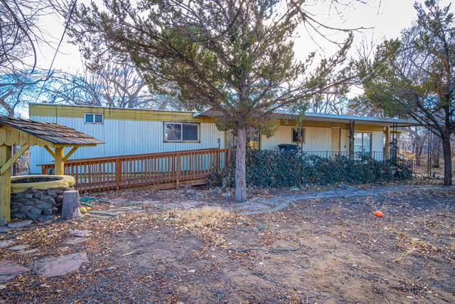 38 La Sombra Loop, Peralta, NM 87042 (MLS #984524) :: The Buchman Group