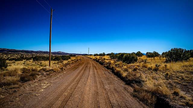 Lot 167 Three Elk Road, Magdalena, NM 87825 (MLS #984528) :: Keller Williams Realty