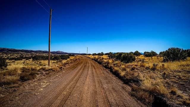 Lot 167 Three Elk Road, Magdalena, NM 87825 (MLS #984528) :: The Buchman Group