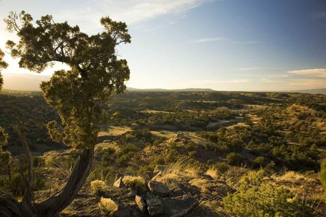 57 Cottonwood Trail, Sandia Park, NM 87047 (MLS #984533) :: The Buchman Group