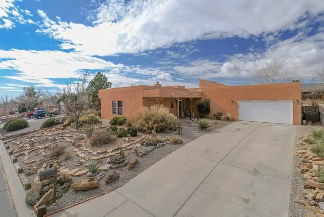 209 Colorado Mountain Road NE, Rio Rancho, NM 87124 (MLS #984550) :: The Buchman Group