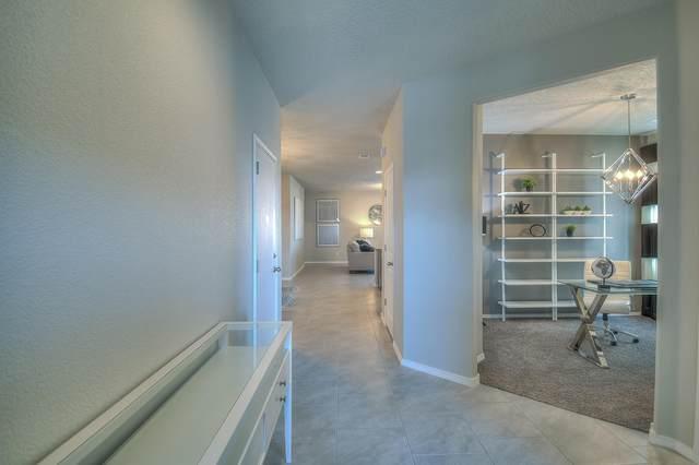 11448 Manzano Vista Avenue SE, Albuquerque, NM 87123 (MLS #984553) :: The Buchman Group
