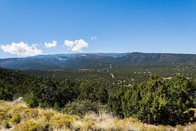 14 Canon Escondido, Sandia Park, NM 87047 (MLS #984570) :: Keller Williams Realty