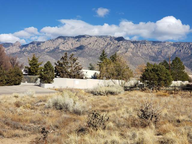 11620 San Rafael Avenue NE, Albuquerque, NM 87122 (MLS #984581) :: The Buchman Group