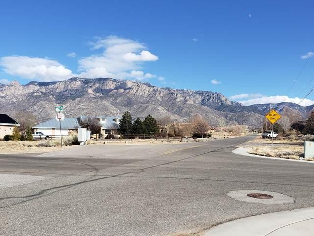 Wilshire Avenue NE, Albuquerque, NM 87122 (MLS #984588) :: Keller Williams Realty