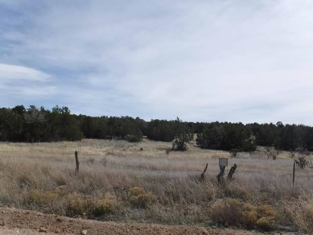 0 Martinez Road, Edgewood, NM 87015 (MLS #984631) :: Campbell & Campbell Real Estate Services
