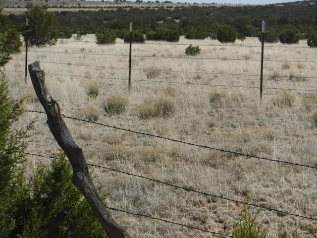 Sunflower Place, Moriarty, NM 87035 (MLS #984634) :: Campbell & Campbell Real Estate Services