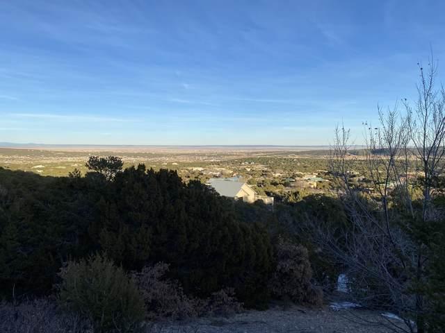 83 Sandia Mountain Ranch Drive, Tijeras, NM 87059 (MLS #984647) :: The Buchman Group