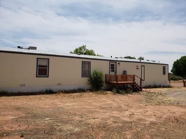 890 Highway 4, San Ysidro, NM 87053 (MLS #984684) :: Keller Williams Realty