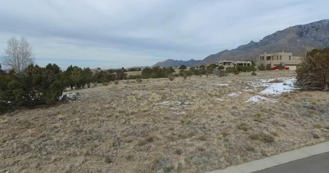 13705 Quaking Aspen Place NE, Albuquerque, NM 87111 (MLS #984705) :: Keller Williams Realty